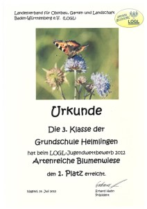 Wiesenbuch Urkunde[1]